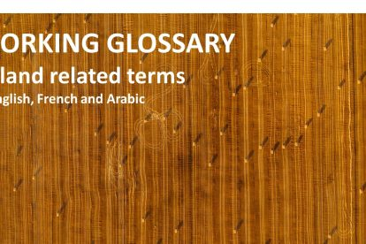 Working glossary of land related terms in English, French and Arabic